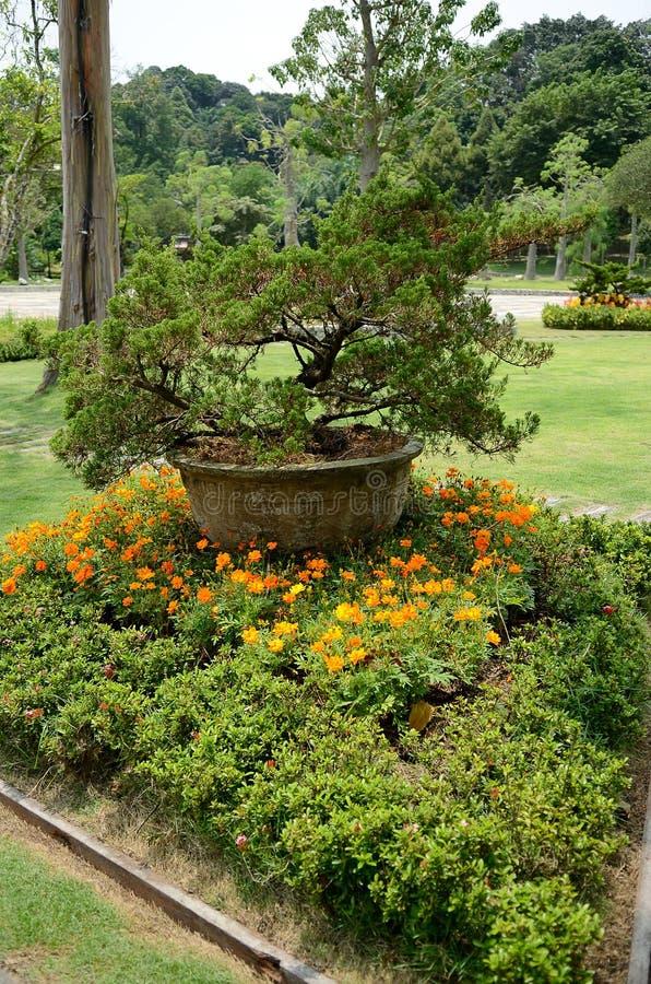 Perdana Botanical Garden. S in Kuala Lumpur, Malaysia stock images