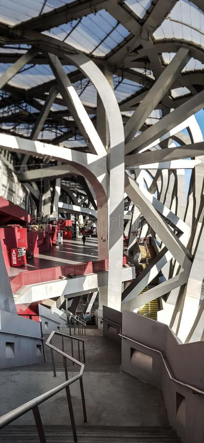 Perdeu o ninho, estádio de nacional de Pequim fotos de stock royalty free