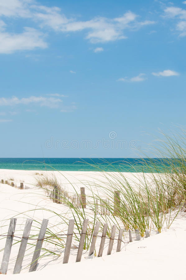 Perdido Key Sand Dune. Sand dune on Perdido Key, Florida stock photography