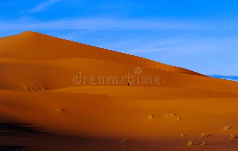 Perdido no deserto foto de stock royalty free