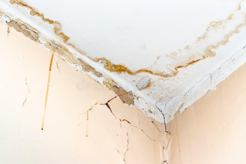 Perdite dell'acqua piovana sul soffitto a causa del tetto nocivo che causa decadimento, sbucciando pittura e ammuffito fotografia stock libera da diritti