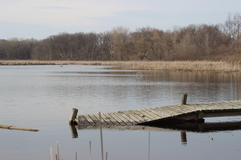 Perdu dans l'inondation photographie stock libre de droits