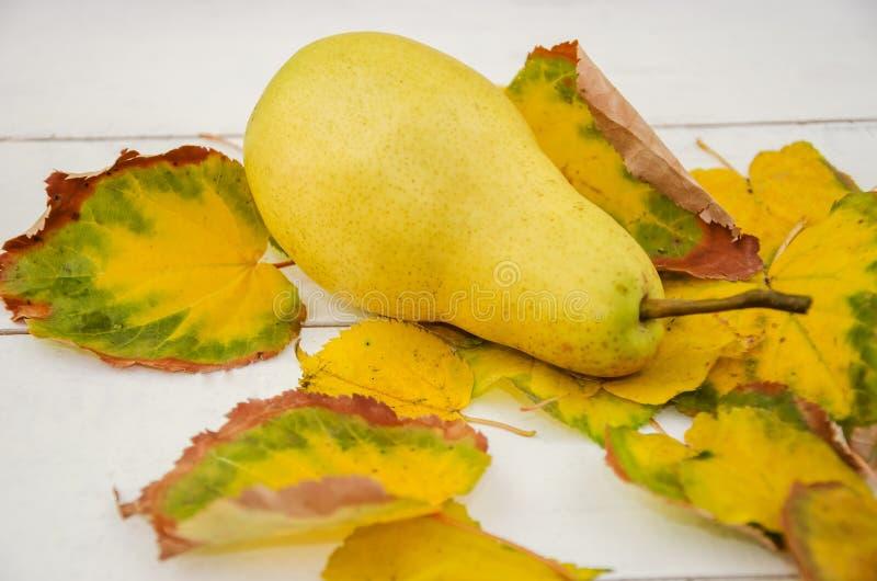 Pere gialla matura e foglie su fondo bianco Chiudi immagini stock libere da diritti