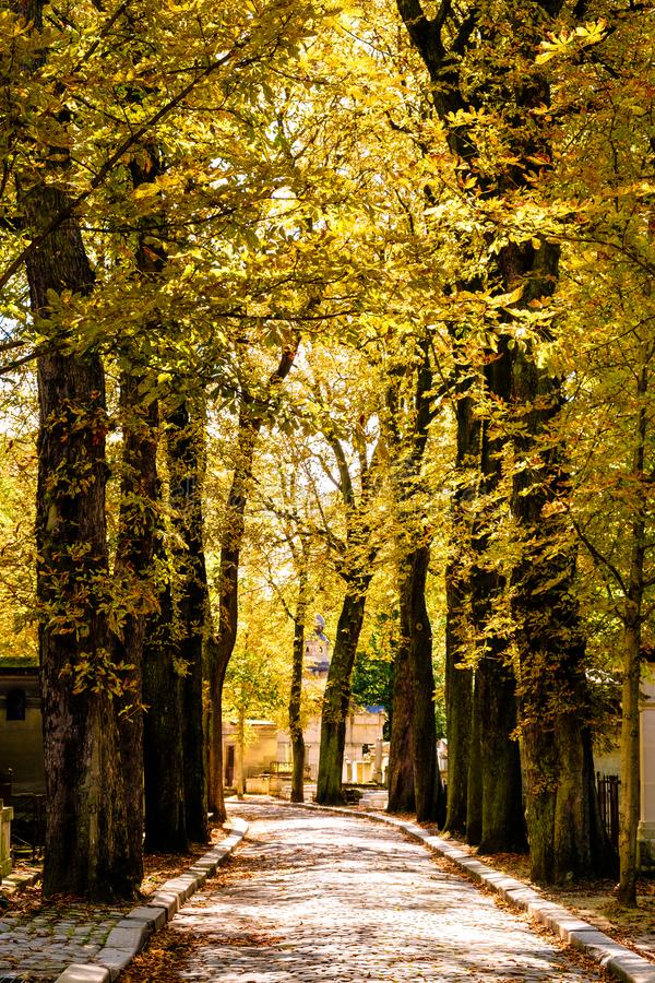 The Pere Lachaise cemetery in Paris during fall royalty free stock photos