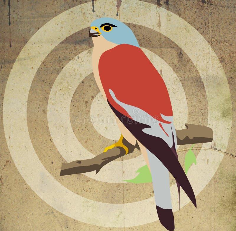 Download Peregrine falcon stock illustration. Illustration of portrait - 18205402