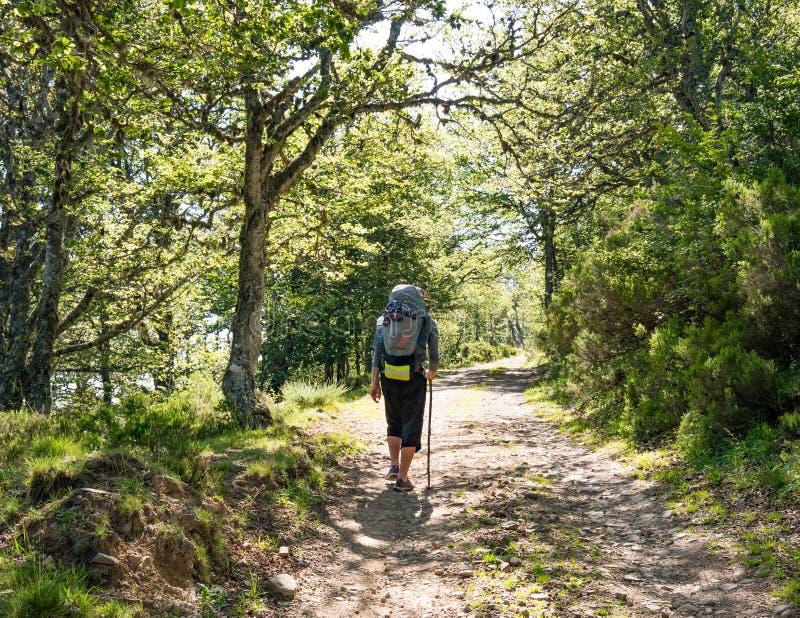Peregrino solo con la mochila que camina el Camino de Santiago en España, manera de San Jaime foto de archivo