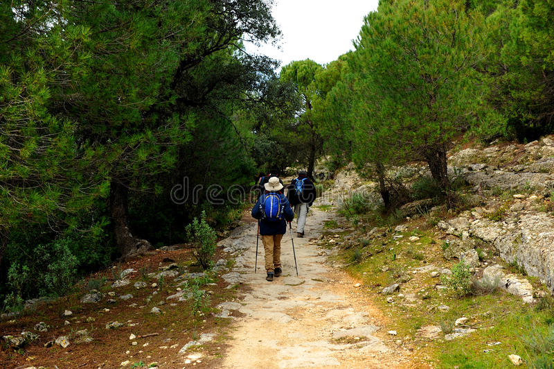 Peregrinos no Mozarabic Camino de Santiago, Cerro Muriano, província de Córdova, a Andaluzia, Espanha fotografia de stock