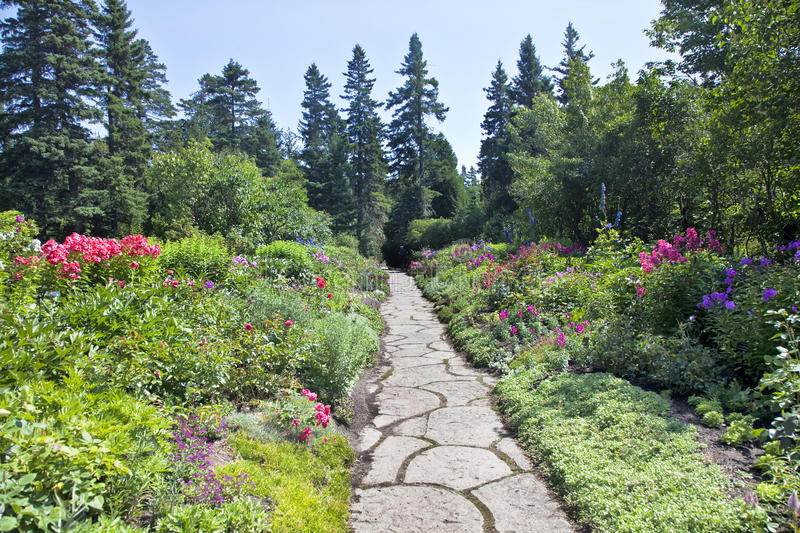 Download Perennial Garden stock photo. Image of landscaping, color - 24612146