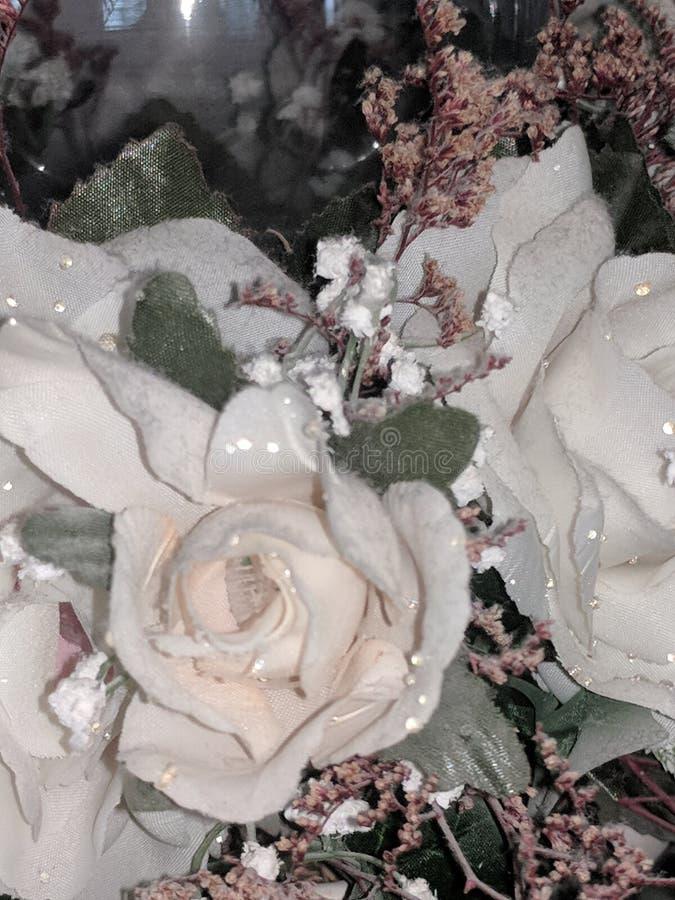 Perfección de la flor imagen de archivo libre de regalías