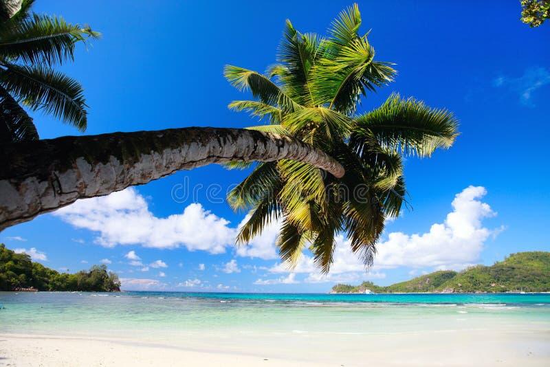 Perfeccione la playa en Seychelles fotografía de archivo