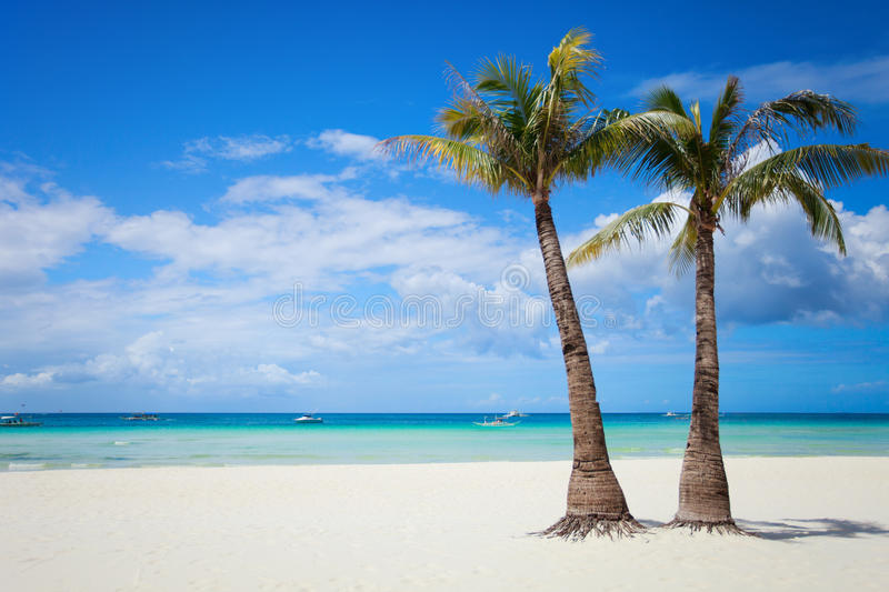 Perfect beach royalty free stock images