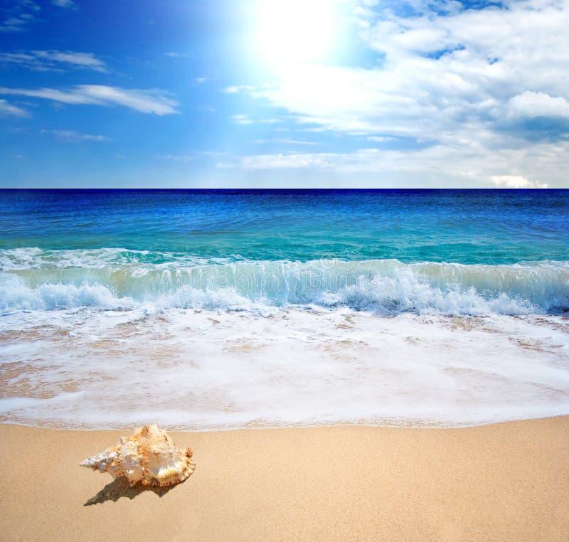 Perfect beach stock image