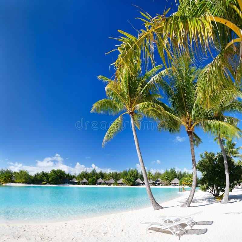 Perfect beach on Bora Bora royalty free stock photography