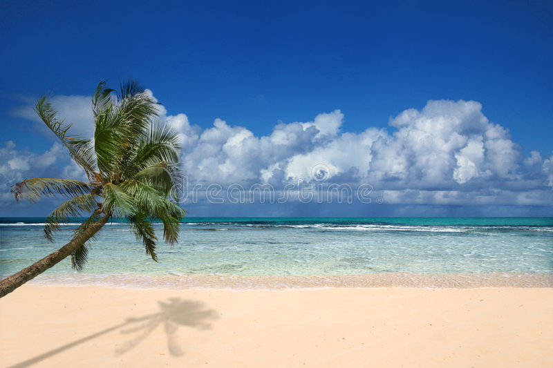 Perfect Beach In Hawaii Royalty Free Stock Image