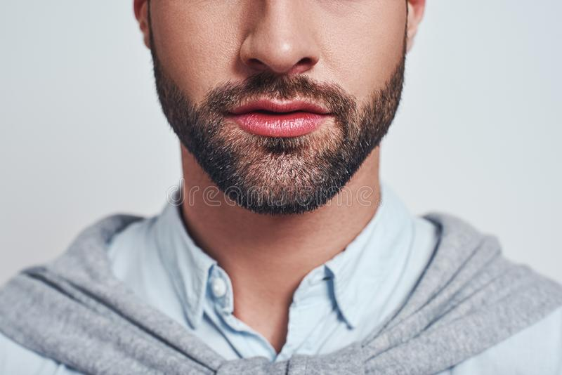 Perfect beard. Close-up cropped image of a handsome young man with a beard stock image
