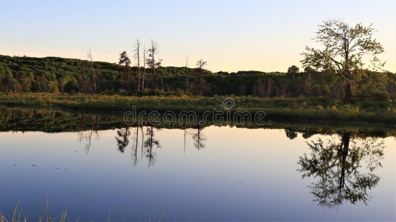 Perfect beeld van bomen en zonsondergang op de bonnechererivier stock afbeeldingen