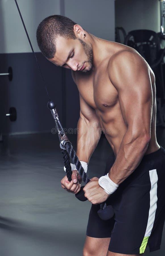 With Perfect Body modelo masculino muscular considerável que faz o tríceps Exe fotos de stock royalty free