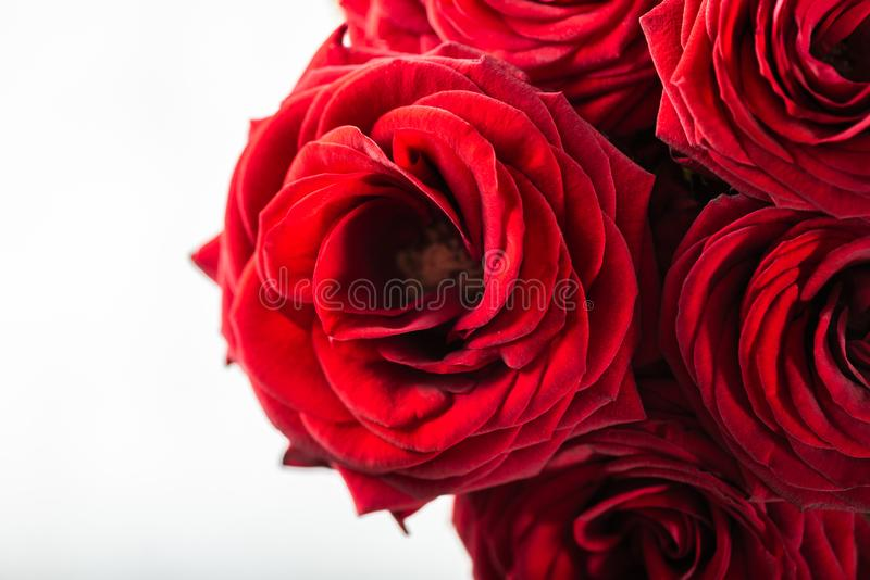Beautiful bouquet of red roses, love and romance concept royalty free stock photos
