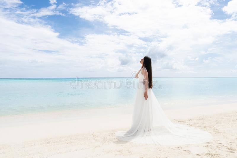 The perfect bride. A young bride in a white dress is standing on a snow-white beach royalty free stock photography