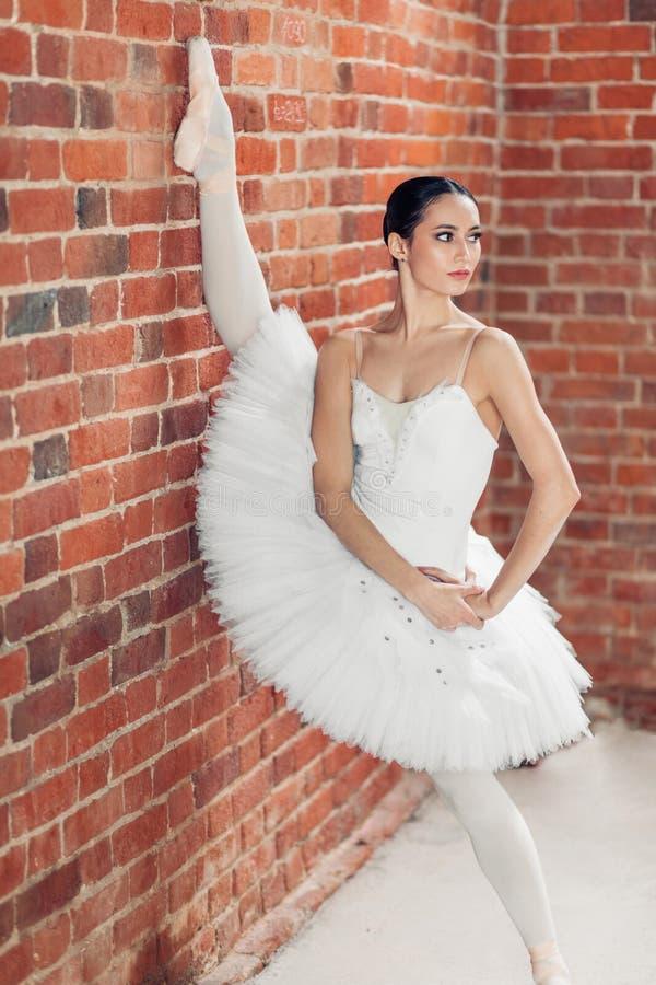 Perfect elastyczność wspaniała żeńska gimnastyczka opiera na ścianie obraz stock