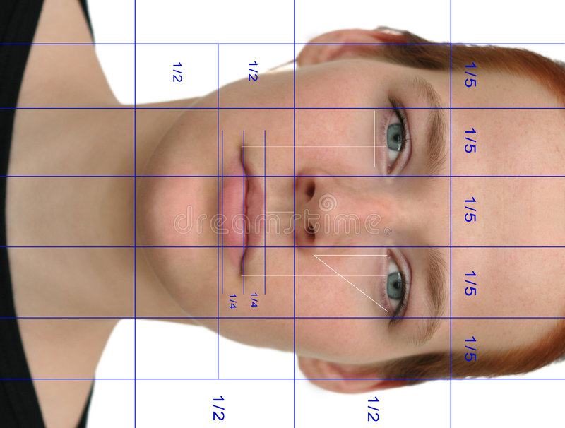 Perfect face (with lines). A so-called perfect face, the expected result of cosmetic surgery. The lines show the perfect proportions of the human face stock photography