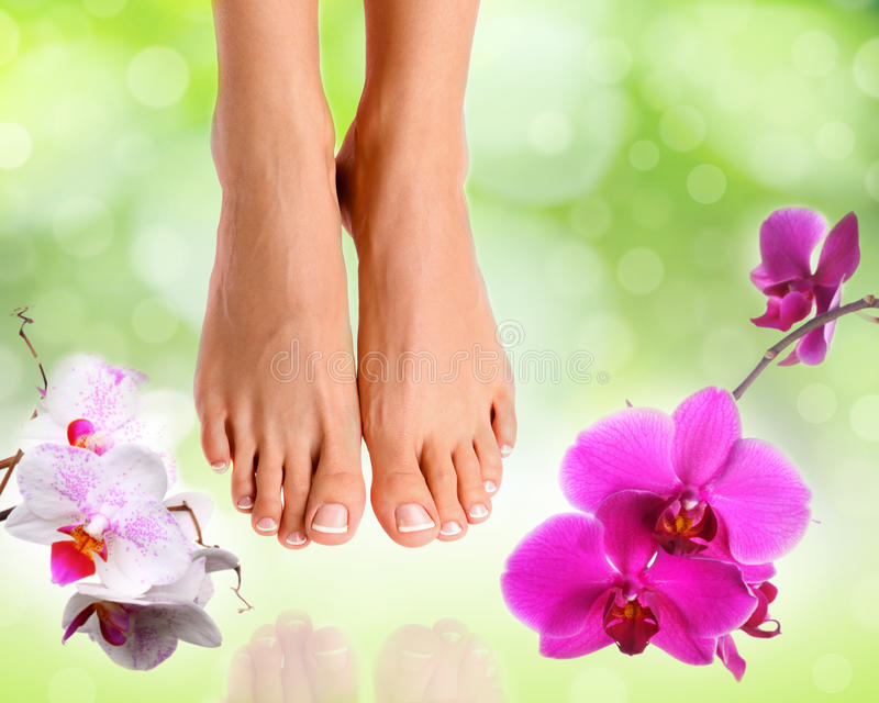 Perfect female feet stock photography