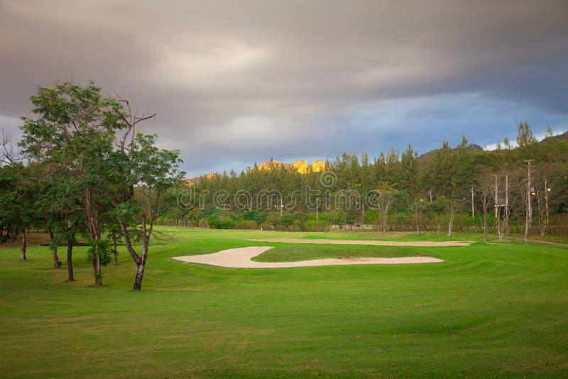 Perfect Groen gras op een golfgebied stock foto