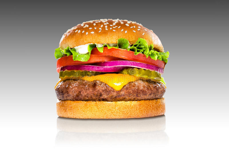 Perfect hamburger classic burger american cheeseburger isolated on gradient reflection. Giant perfect burger large massive thick classic american cheeseburger stock photography