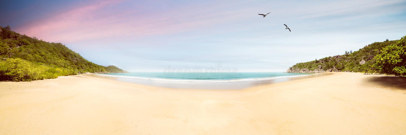 Perfect lonely Beach. Perfect Lonely idyllic beach with birds stock image