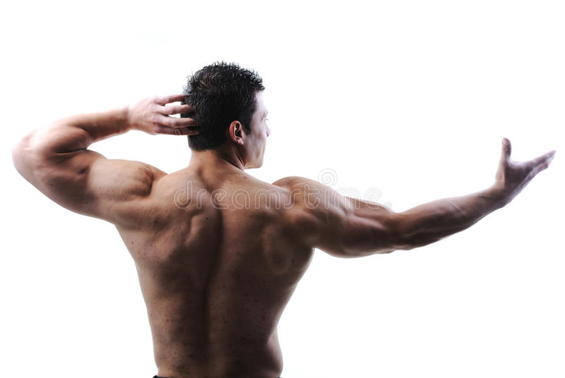 The Perfect male body royalty free stock photo