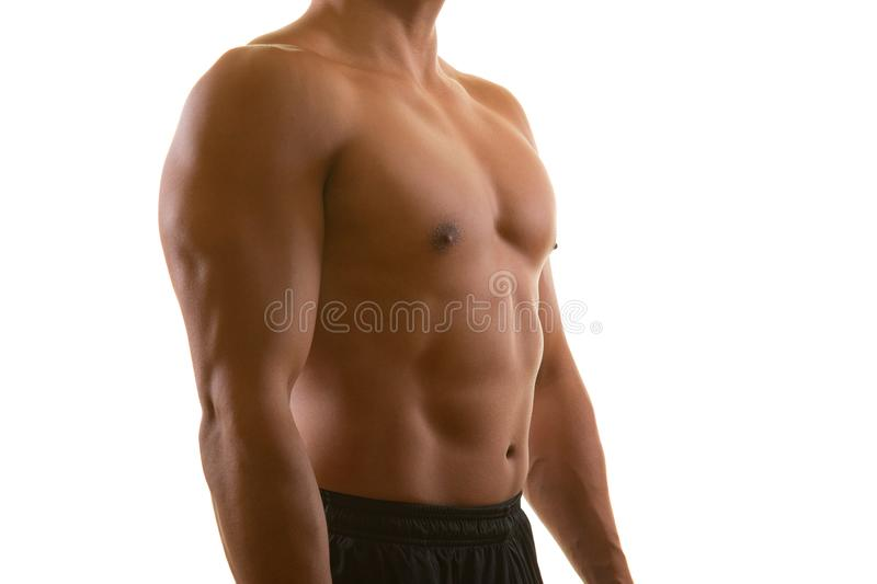 Perfect male muscular torso isolated on white background. Fitness, workout, diet and training concept stock images