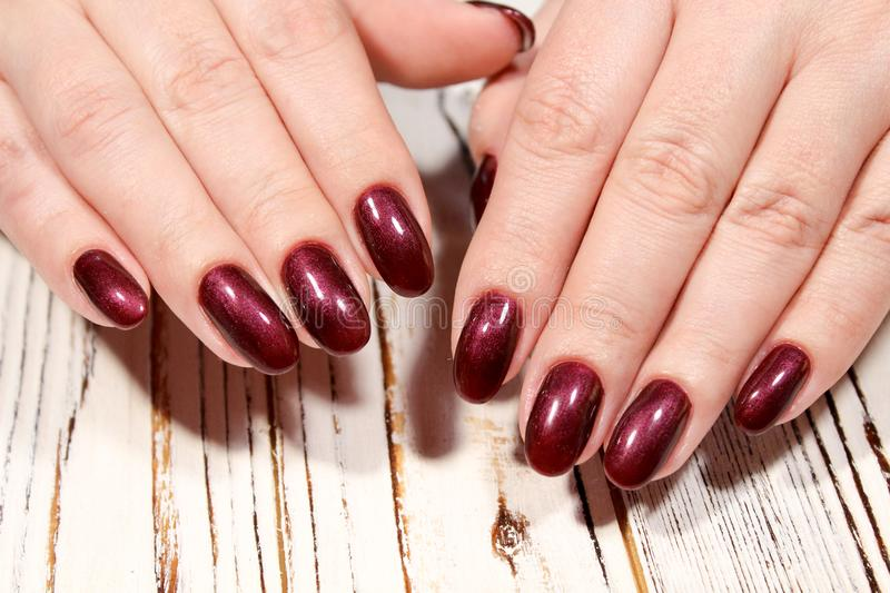 Perfect Manicure And Natural Nails. Stock Photo - Image of hands ...