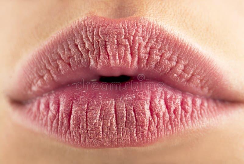 Perfect natural lip makeup. Close up macro photo with beautiful female mouth. Beautiful spa tender lip, sexy lips royalty free stock photos