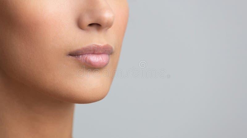 Perfect natural lip makeup, grey studio background royalty free stock photography