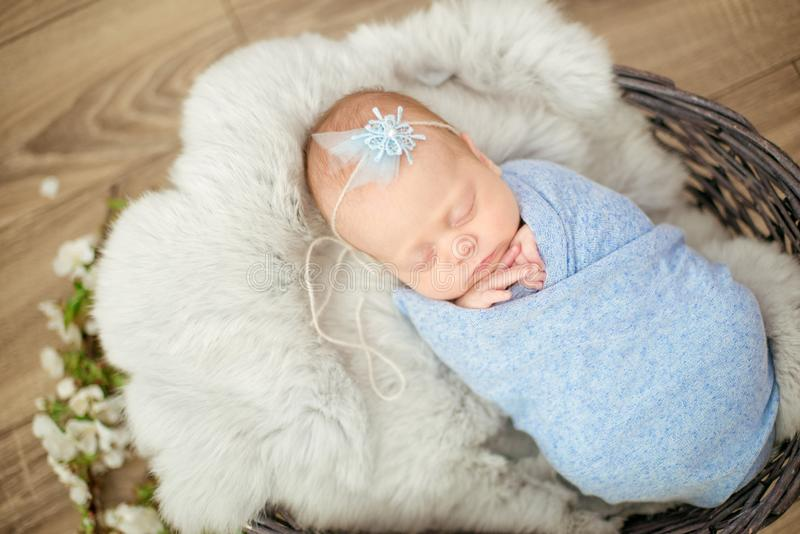 Perfect newborn baby girl in blue blanket in a wicker basket decorated with branches stock images