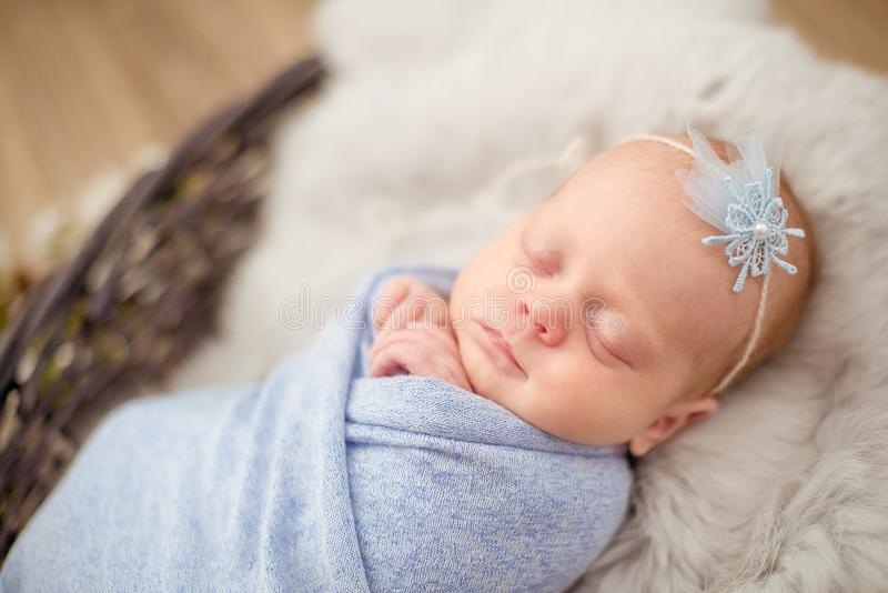Perfect newborn baby girl in blue blanket in a wicker basket decorated with branches royalty free stock photography