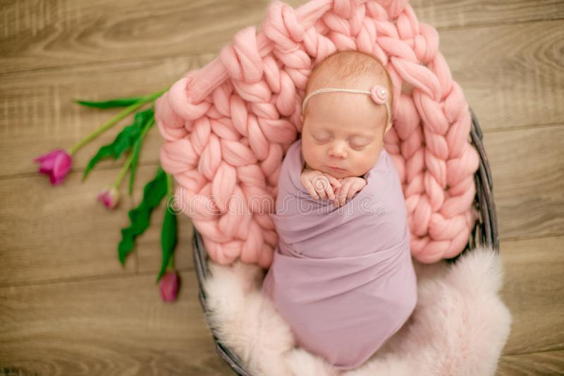Perfect newborn baby girl in pink blanket in a wicker basket decorated with beautiful pink tulips stock photos