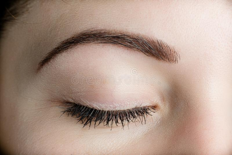 Perfect oog - brow royalty-vrije stock foto