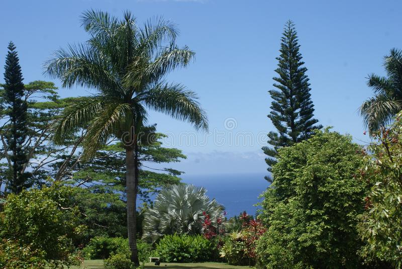 Perfect Paradise in Maui Hawaii royalty free stock images