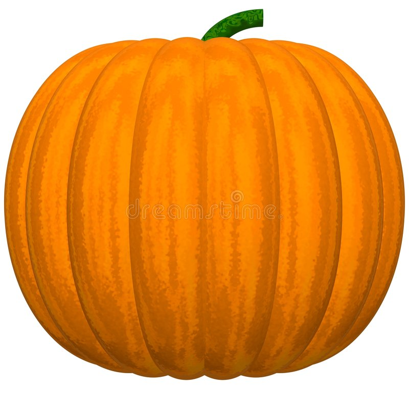 Download Perfect Pumpkin stock illustration. Illustration of food - 6415269