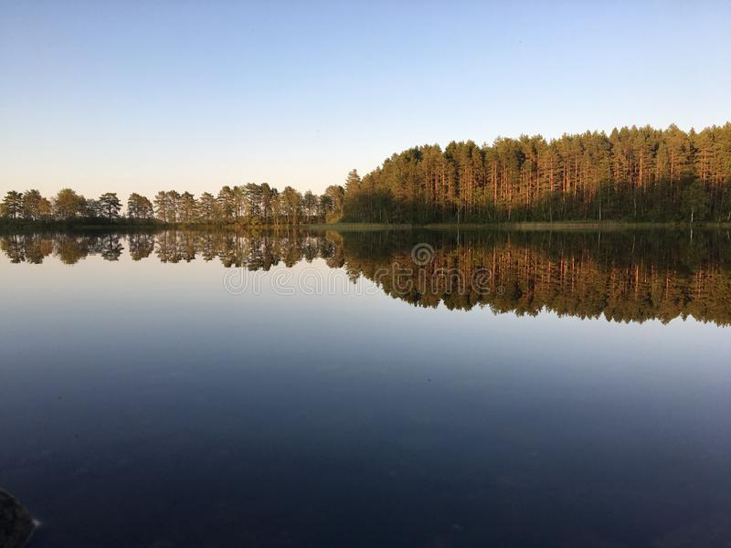 Perfect reflections on the lake in summer evening with warm colors. A unique image of the surrounding nature royalty free stock images