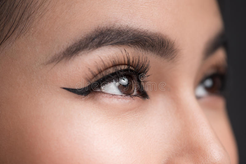 Perfect shape of eyebrows. Beautiful macro shot of female eye wi royalty free stock photo