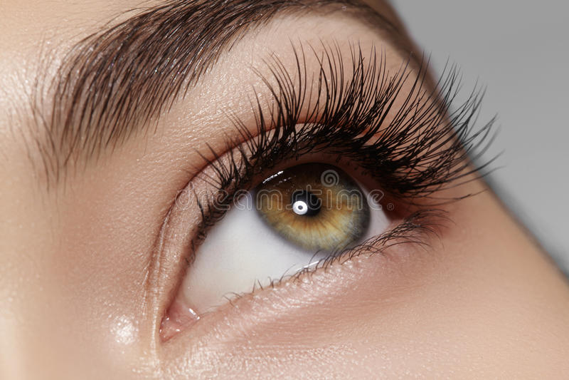 Perfect shape of eyebrows, brown eyeshadows and long eyelashes. Closeup macro shot of fashion smoky eyes visage royalty free stock images