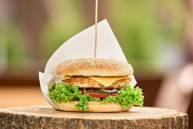 Perfect size hamburger on stick. stock photos