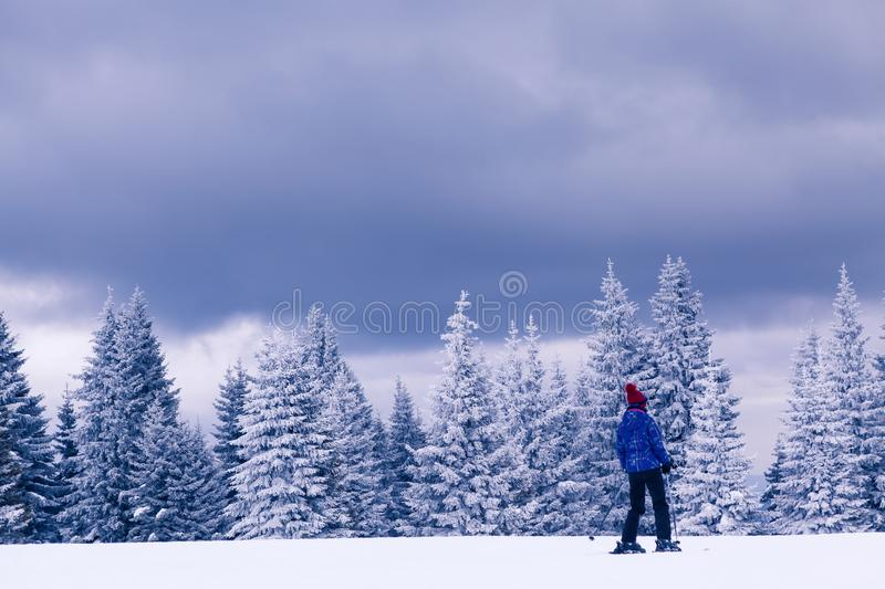 Skiing in cloudy winter day royalty free stock photography