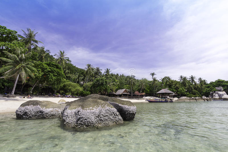 Perfect tropical bay on Koh Tao Island with limestone. Thailand. Asia royalty free stock photo
