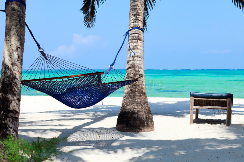 Perfect tropical paradise. Beach of Zanzibar island with palm trees and hammock royalty free stock images