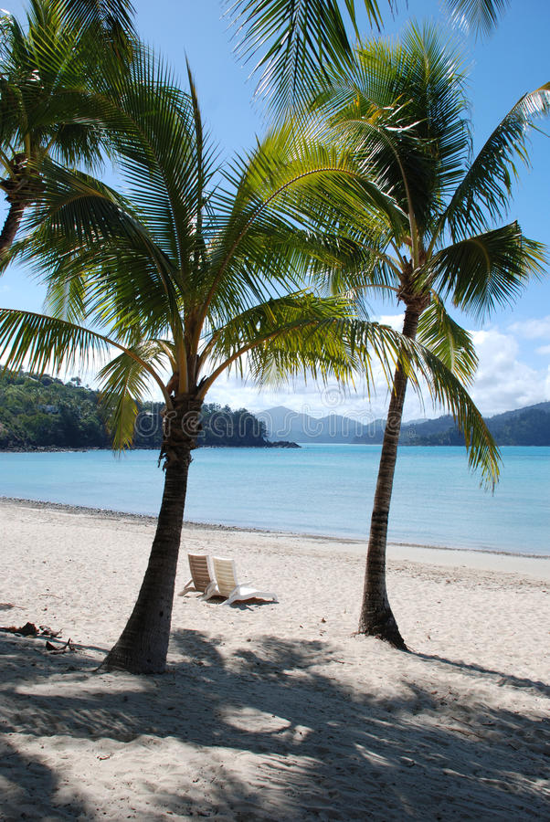 Perfect tropical white sand beach royalty free stock images