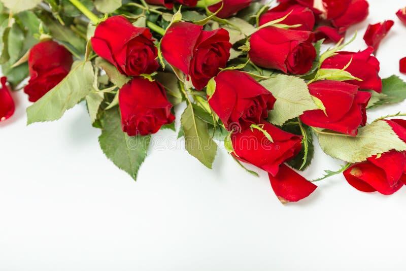 Perfect walentynek czerwone róże obrazy royalty free