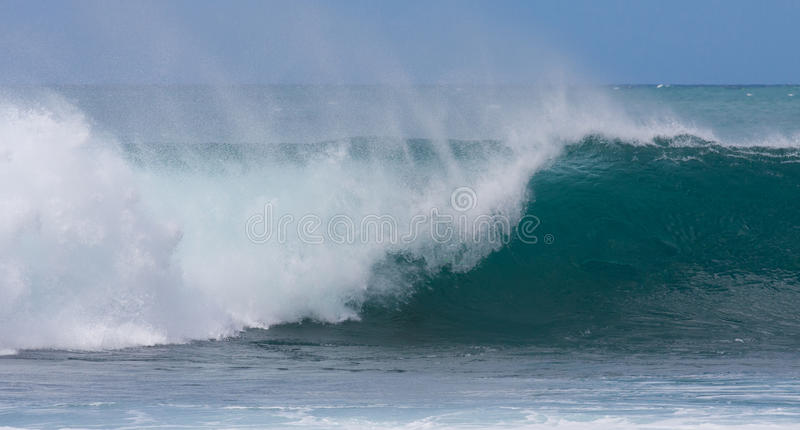 A perfect wave for surfing royalty free stock image